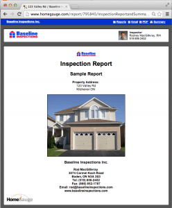 Sample Online Inspection Report