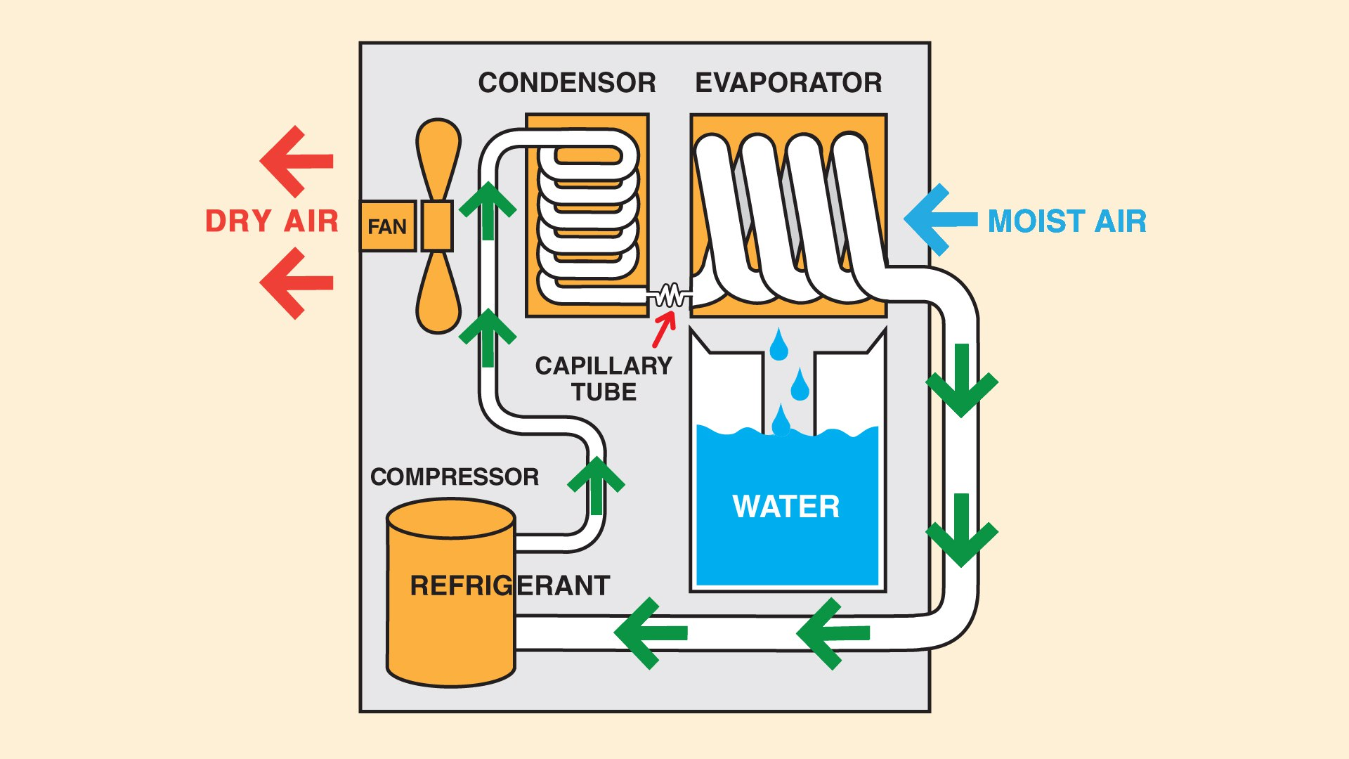Diagram of a dehumidifier that is used to stop basement moisture problems.