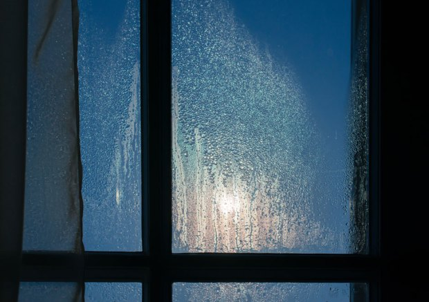 Condensation forming on windows of a house in the Winter.