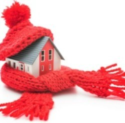 House bundled up in Winter scarf and hat to provide insulation.