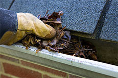 Person clearing leaves out from a house's eavestroughs as part of a fall home maintenance process.
